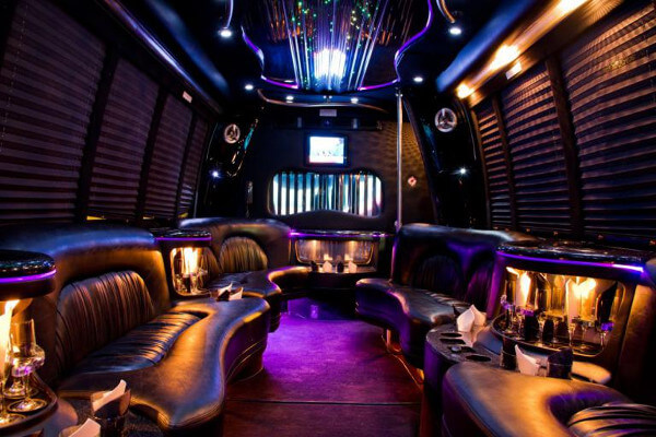 15 Person Party Bus Rental Atlanta